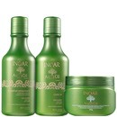 argan oil hair kit (3 produtos)