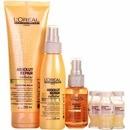 l'oréal professionnel absolut repair cauterização cellular a frio kit (4 produtos)